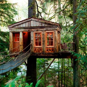 Econom Treehouse